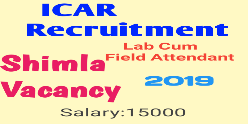 Indian Agricultural Research Institute (ICAR) Recruitment 2019