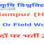 HP Govt Jobs CSK University Palampur Recruitment